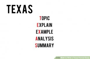 Image titled Write a Texas structure Essay Step 1