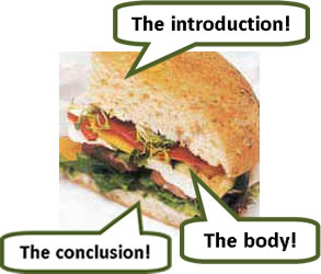the various elements of the essay are just like the elements of a sandwich or a burger...